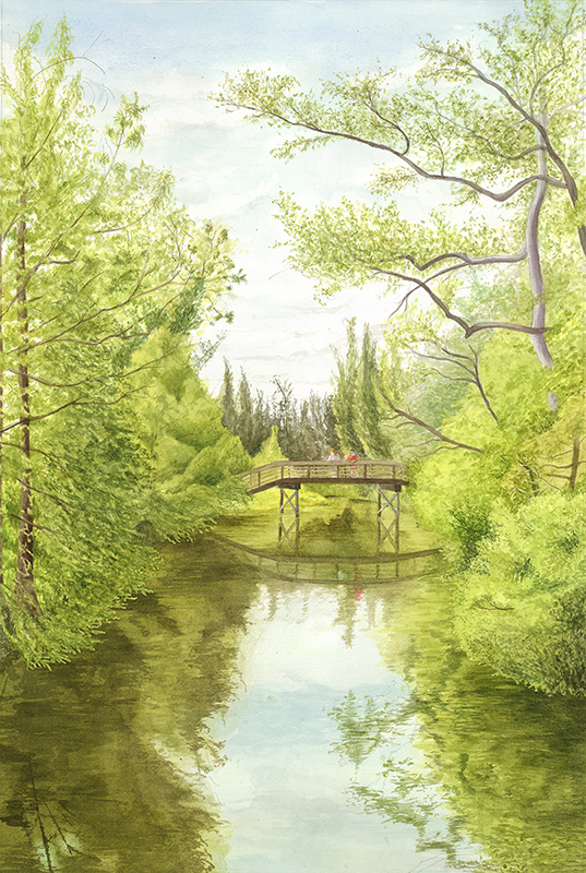 Treetops Park #14